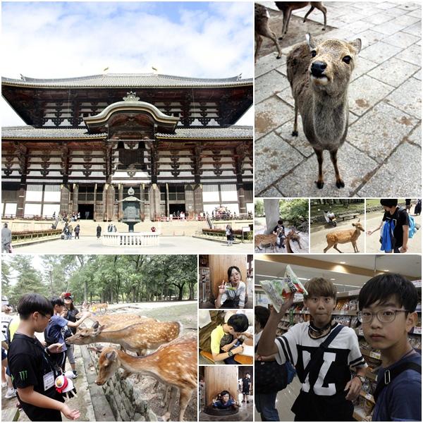 japan_0811.jpg